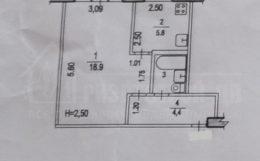1-комнатная квартира в центре (городские пруды)