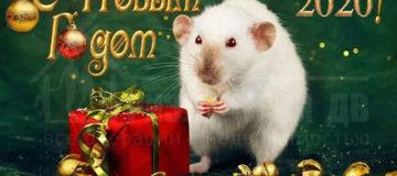 С Новым 2020 Годом!!!))))